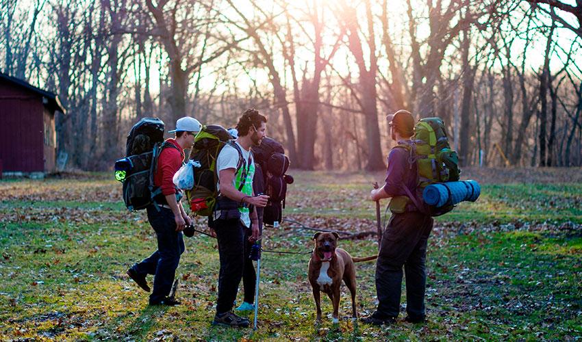 camping-con-amigos